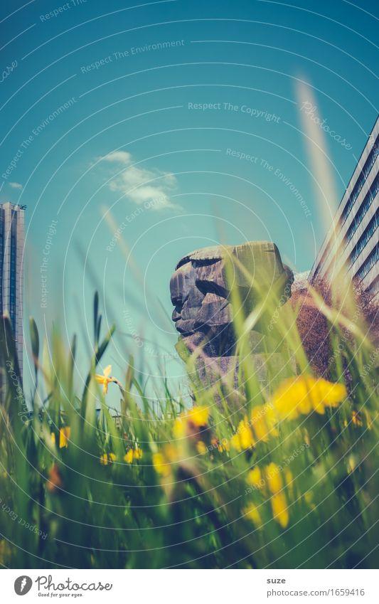 Ich, der Käfer und Karl Natur Stadt blau grün Blume Umwelt Architektur Blüte Frühling Wiese Stimmung Stadtleben Platz Vergänglichkeit Romantik Vergangenheit