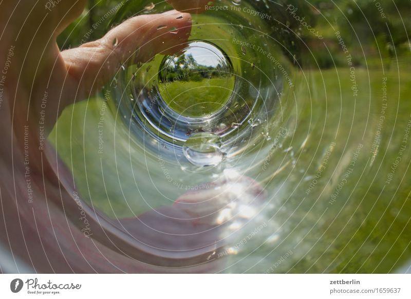 Wasserglas Sommer Hand Wärme Wiese Garten Textfreiraum Wachstum Glas Wassertropfen Finger Getränk trinken Tropfen festhalten