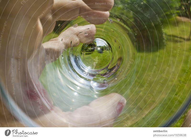 Trinken Durst Erfrischungsgetränk Durstlöscher Garten Schrebergarten Sommer Textfreiraum trinken Wachstum Wasser Glas Wasserglas Wiese Hand festhalten Finger