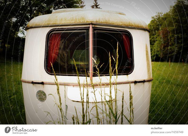 Caravan romance Ferien & Urlaub & Reisen Erholung Ferne Zusammensein Design Häusliches Leben Freizeit & Hobby Idylle Ausflug einzigartig Romantik Abenteuer