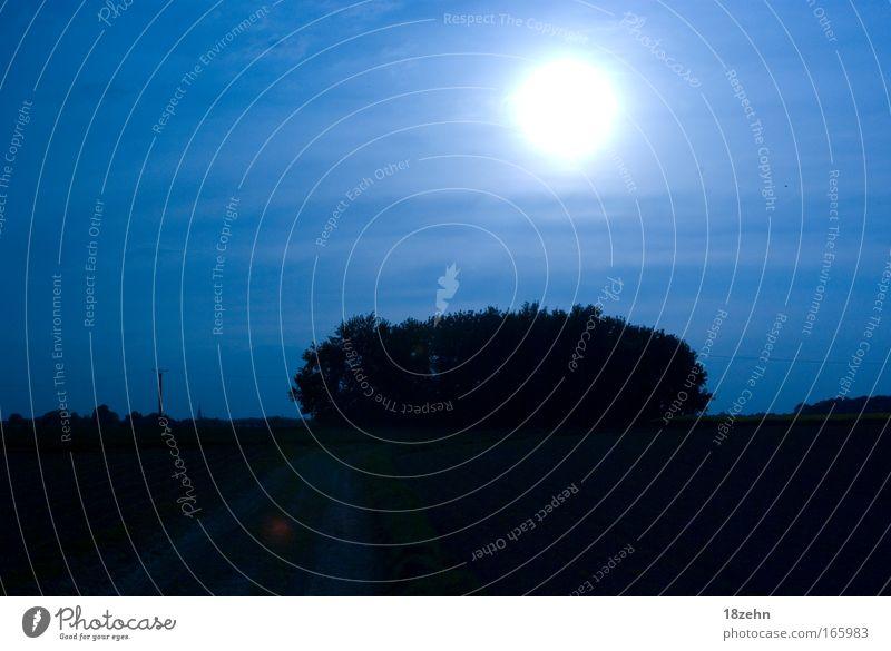 Under a blue moon Farbfoto Außenaufnahme Menschenleer Textfreiraum oben Abend Licht Sonnenlicht Sonnenstrahlen Sonnenaufgang Sonnenuntergang Gegenlicht
