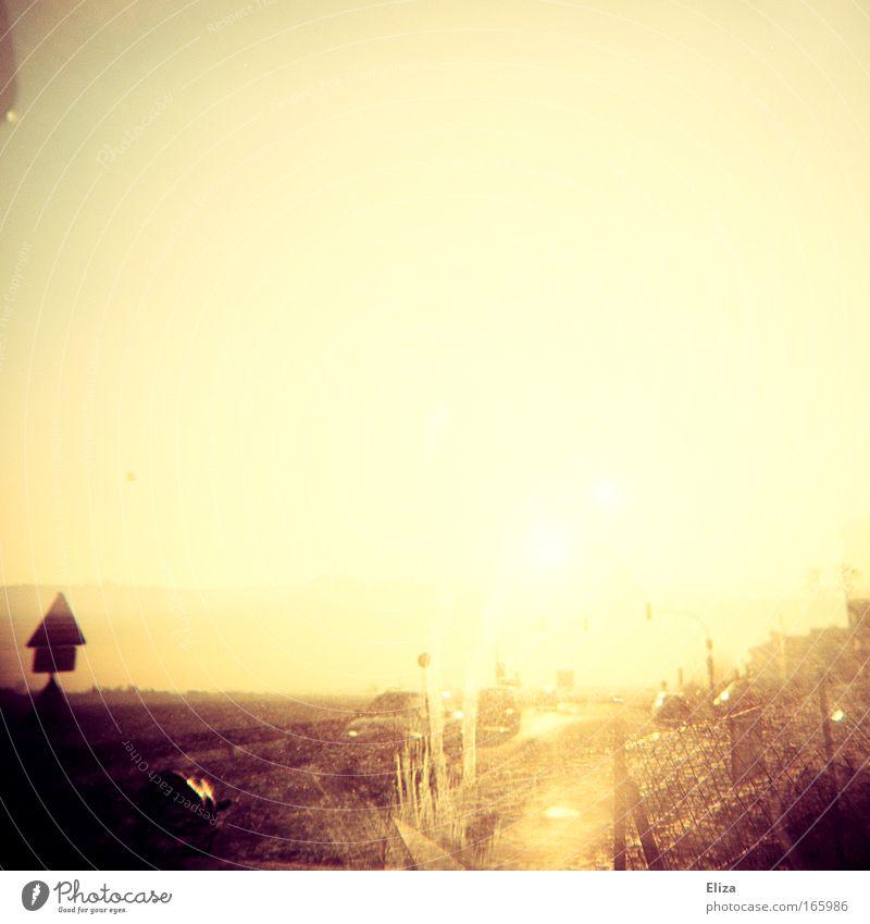 When The Sun Goes Down Natur Himmel Sonne Einsamkeit Ferne Straße Freiheit Wege & Pfade PKW Landschaft Stimmung Feld Horizont Klima Wüste Unendlichkeit