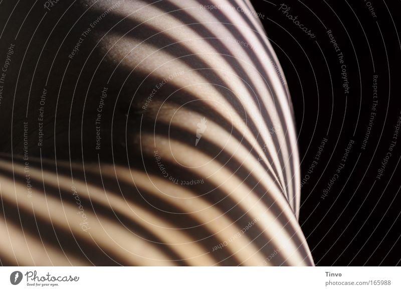 dark-striped Farbfoto Gedeckte Farben Innenaufnahme Detailaufnahme Textfreiraum rechts Licht Schatten Kontrast Haut harmonisch Wohlgefühl Zufriedenheit feminin