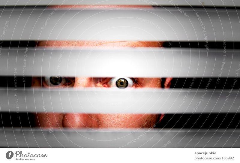 Stripes Farbfoto Textfreiraum oben Kontrast Blick Blick in die Kamera Gesicht Mann Erwachsene Kopf Auge 1 Mensch beobachten entdecken bedrohlich Neugier