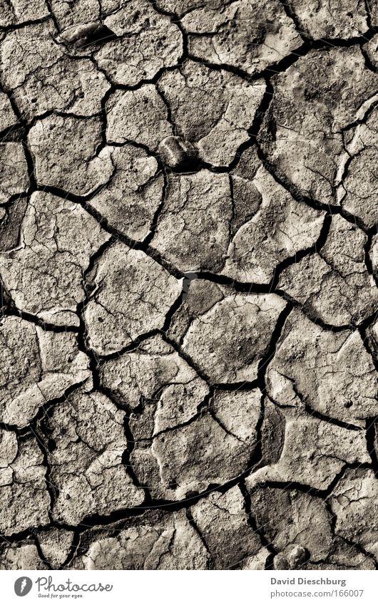 Dead Country Natur Landschaft Sand Linie Hintergrundbild Felsen Erde natürlich wild Wüste trocken Riss Klimawandel Dürre gerissen karg