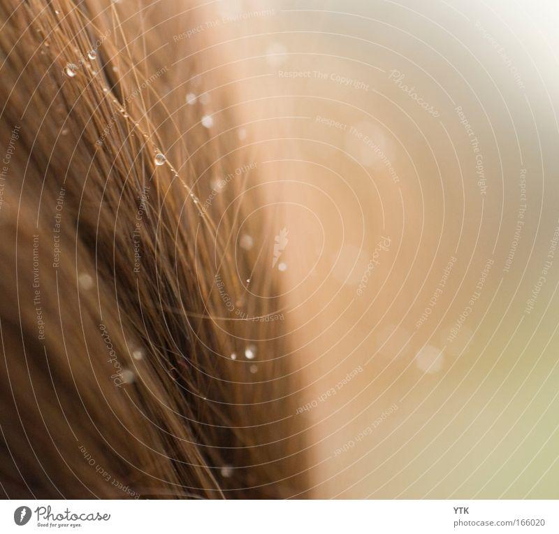 Sommerregen Mensch schön Freude Umwelt feminin Haare & Frisuren braun Stimmung Regen glänzend Klima Freizeit & Hobby Wassertropfen ästhetisch Schutz