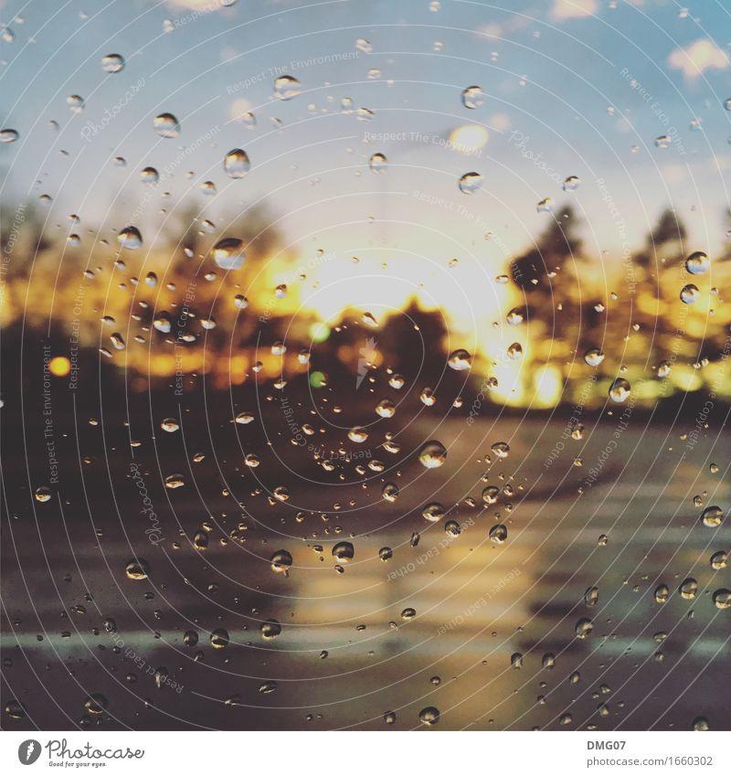 Drops Umwelt Natur Wasser Wassertropfen Himmel Wolken Frühling Sommer Herbst Winter Klima Klimawandel Wetter Schönes Wetter schlechtes Wetter Unwetter Wind