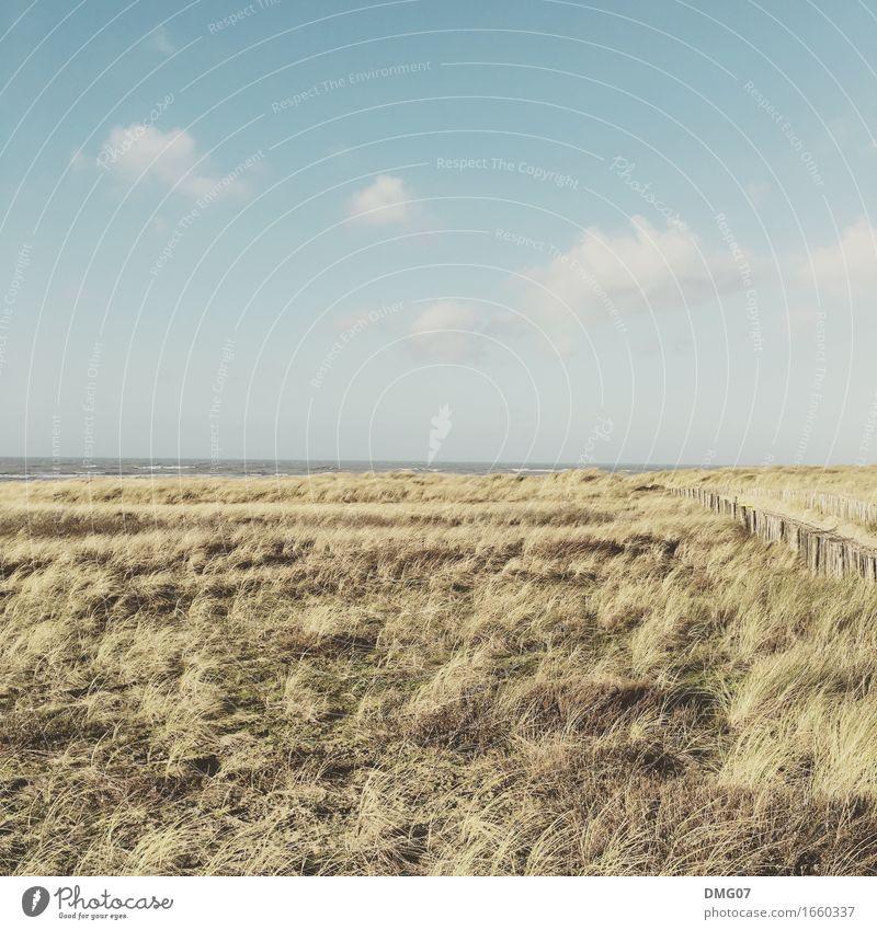 50:50 Ferien & Urlaub & Reisen Tourismus Sommer Sonne Strand Meer Umwelt Natur Landschaft Urelemente Wasser Himmel Wolken Sonnenaufgang Sonnenuntergang