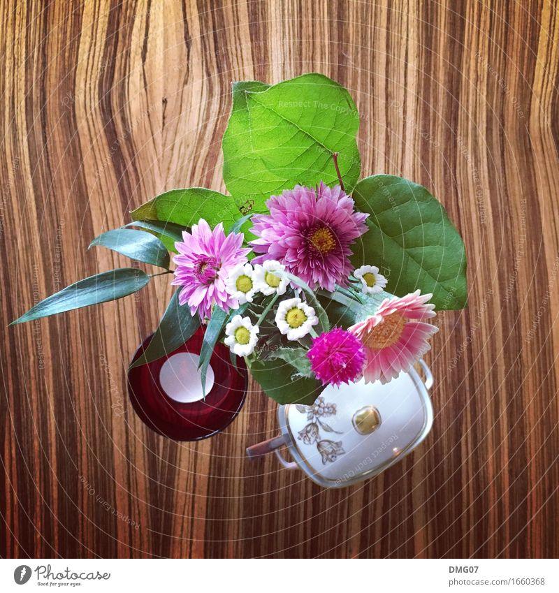 FlowerPower Pflanze Sommer Blume Blatt Freude Umwelt Herbst Frühling Lifestyle Stil Kunst Party Design Dekoration & Verzierung Musik Tisch