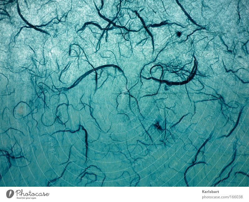 äther. alt blau Pflanze Stoff Bewegung Haare & Frisuren Muster Kunst Hintergrundbild Design Papier modern ästhetisch Freizeit & Hobby Dekoration & Verzierung