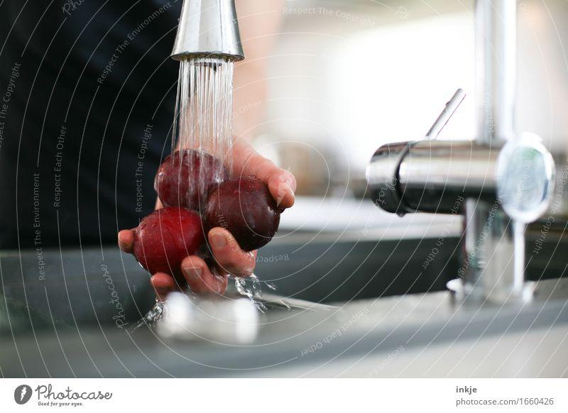 Rund | drei Pflaumen Lebensmittel Frucht Ernährung Häusliches Leben Küche Wasserhahn Hand 1 Mensch Wasserstrahl festhalten Gesundheit nass rund Sauberkeit