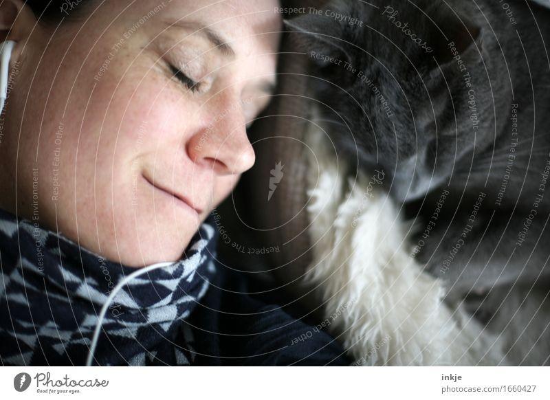 Liebhaben Lifestyle Häusliches Leben Kopfhörer Frau Erwachsene Gesicht 1 Mensch 30-45 Jahre Musik hören Haustier Katze Hauskatze Tier Lächeln Zusammensein