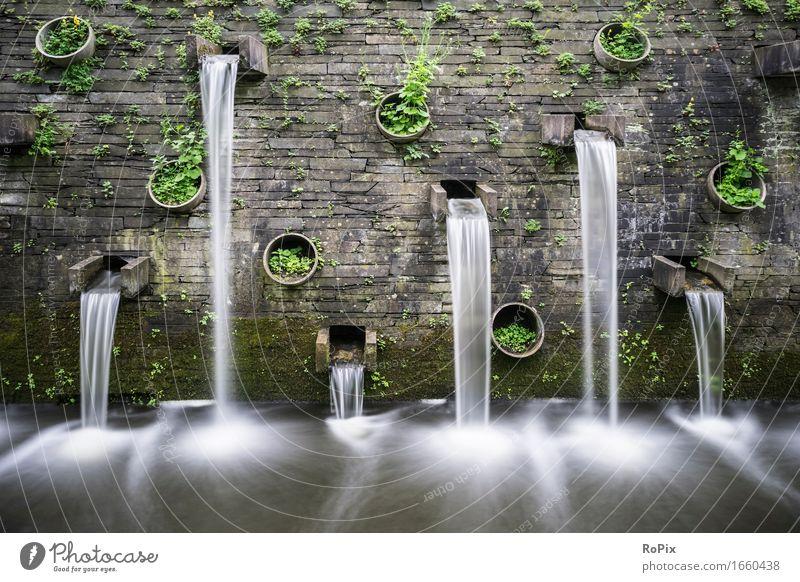 flow Wellness harmonisch Meditation Kultur Umwelt Landschaft Pflanze Urelemente Wasser Moos Farn Garten Park Wasserfall Stein Zeit strömung Fluss ästhetisch