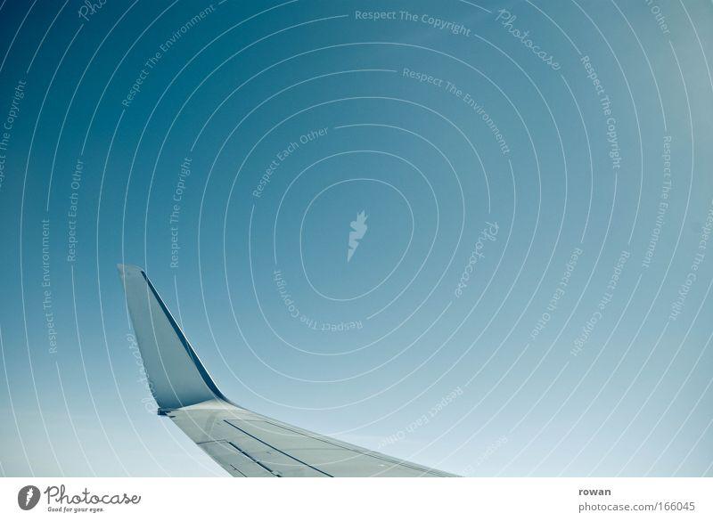 winglet Himmel Freiheit Flugzeug fliegen Luftverkehr Reisefotografie Flügel himmelblau