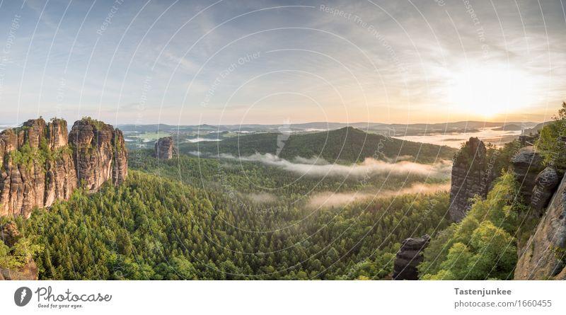 Sunrise Himmel Natur Sonne Baum Landschaft Wald Deutschland Felsen Nebel wandern Schönes Wetter Hügel Dresden Elbe Elbsandsteingebirge Sächsische Schweiz