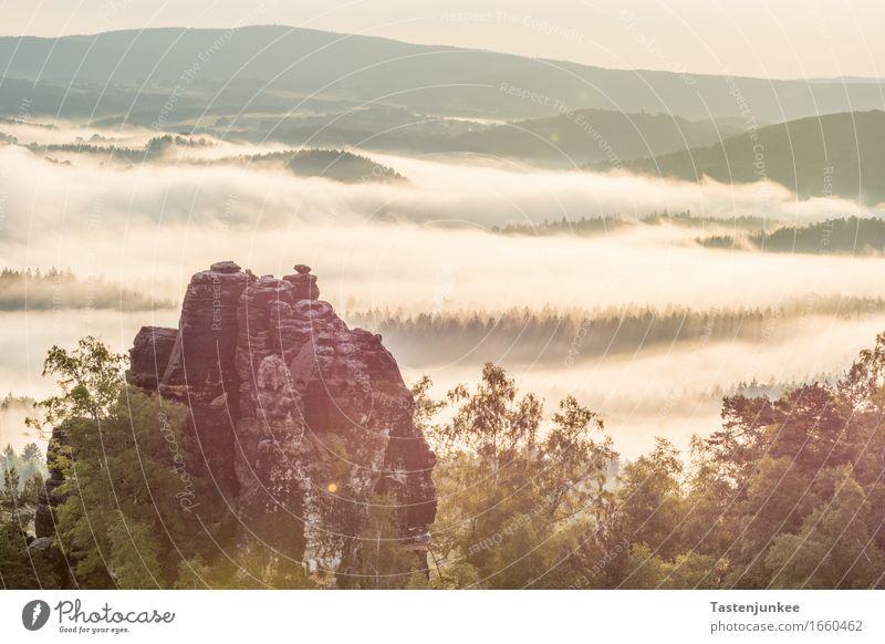 Beautiful morning for a hike Natur Landschaft Himmel Sonne Sonnenaufgang Sonnenuntergang Sonnenlicht Frühling Nebel Baum Wald Hügel Felsen wandern Morgen