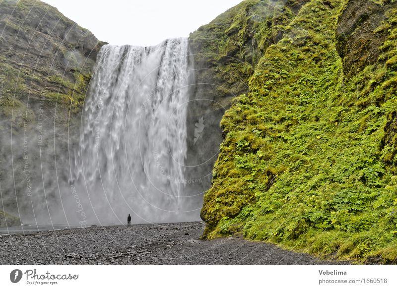 Skogafoss, Island Natur grün Wasser weiß Landschaft grau braun Tourismus Abenteuer Urelemente Sightseeing Wasserfall