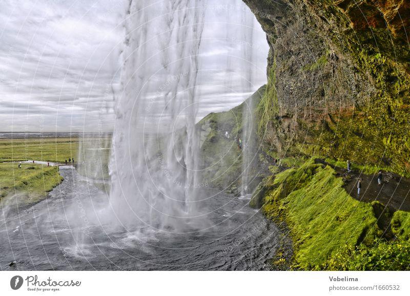 Sejalandsfoss, Island Natur grün Wasser weiß Landschaft grau braun Tourismus wandern Wassertropfen Abenteuer Urelemente Sightseeing Wasserfall