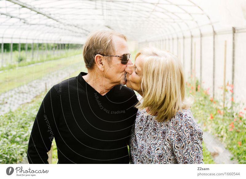 Forever Weiblicher Senior Frau Männlicher Senior Mann Paar Partner 60 und älter Landschaft Sommer Schönes Wetter Garten blond berühren Küssen Liebe alt