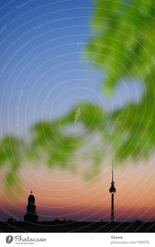 Textfreiraum oben links Himmel Baum Pflanze Blatt Haus Berlin Gebäude Architektur groß Turm Ast Skyline Wahrzeichen Stadtzentrum