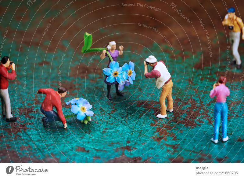 AST 9 | Miniwelten - Foto Shooting mit Bitti Beruf maskulin feminin Frau Erwachsene Mann 6 Mensch Blume Blüte blau braun türkis ästhetisch Erfolg Freude Model