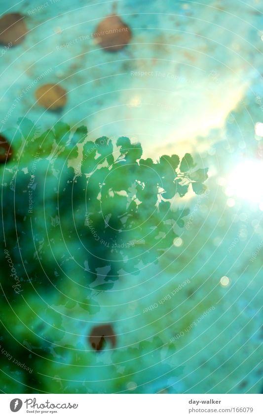 Illusion Farbfoto Außenaufnahme abstrakt Menschenleer Tag Licht Schatten Reflexion & Spiegelung Lichterscheinung Sonnenlicht Sonnenstrahlen Unschärfe