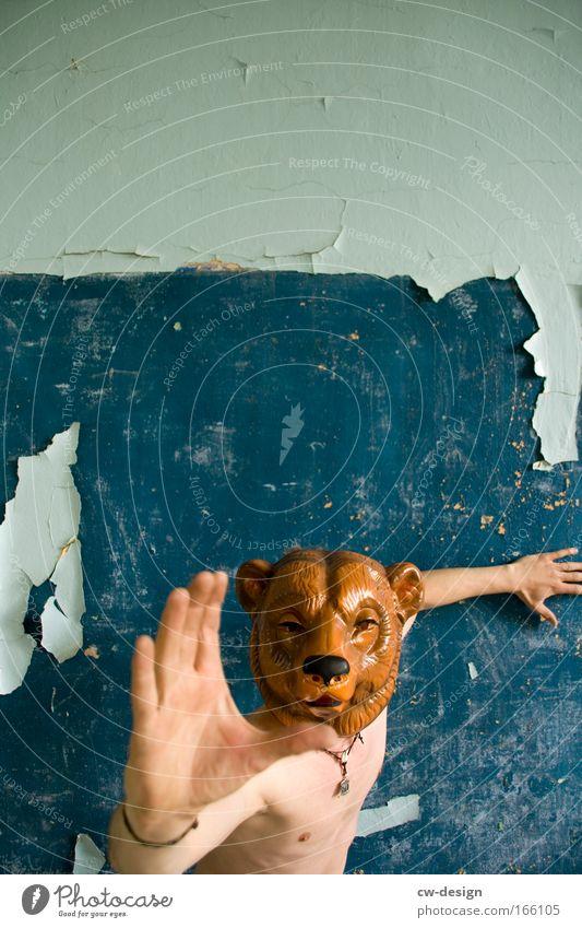 Yogi Bear Mensch Mann blau Hand weiß Tier Erwachsene Spielen Stil braun Freizeit & Hobby Arme Wildtier maskulin verrückt berühren