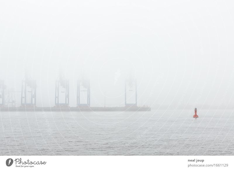 Hamburg, what the fog? Stadt Einsamkeit ruhig Ferne Frühling Herbst grau Schwimmen & Baden Horizont Nebel groß Fluss Hafen Flussufer Schifffahrt Handel