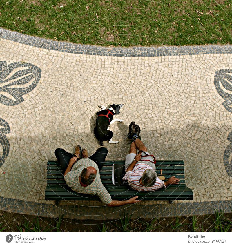 siesta Farbfoto Außenaufnahme Textfreiraum oben Tag Schatten Vogelperspektive Freude Glück Freizeit & Hobby Ausflug Städtereise Sommer Mensch maskulin