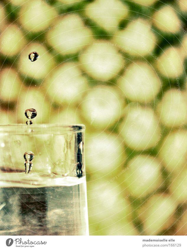 drop Farbfoto Gedeckte Farben Innenaufnahme Detailaufnahme Muster Trinkwasser Glas Wassertropfen Flüssigkeit nass rund rein stagnierend