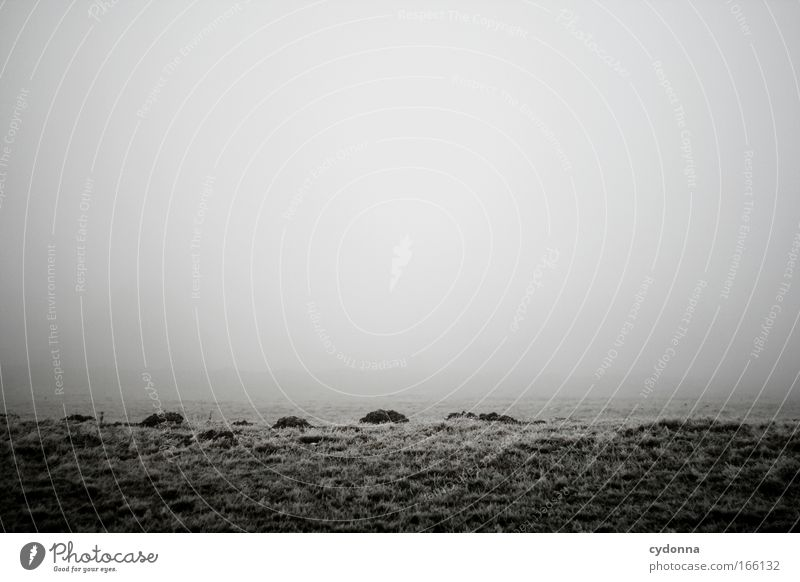 Maulwurfshaufen Himmel Natur ruhig Einsamkeit Ferne Leben Wiese Gefühle Landschaft Umwelt Gras Traurigkeit Eis Feld Horizont Nebel