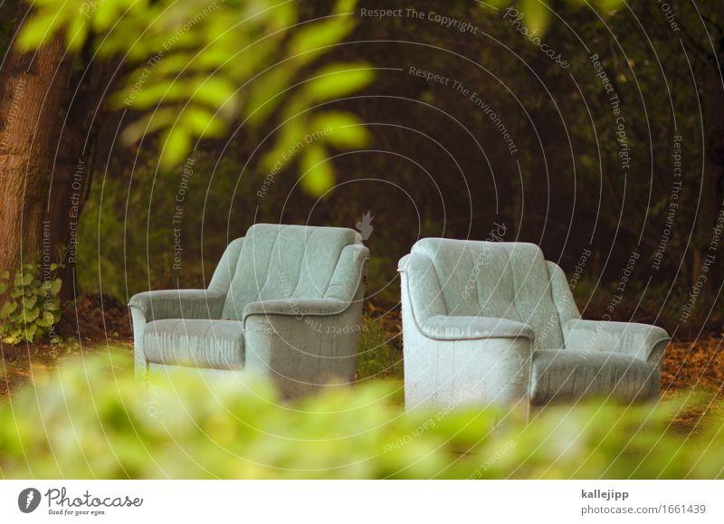 public viewing Häusliches Leben Wohnung Innenarchitektur Möbel Sessel Umwelt Natur Pflanze Baum Blatt nachhaltig Umweltverschmutzung Umweltschutz Müll Sperrmüll