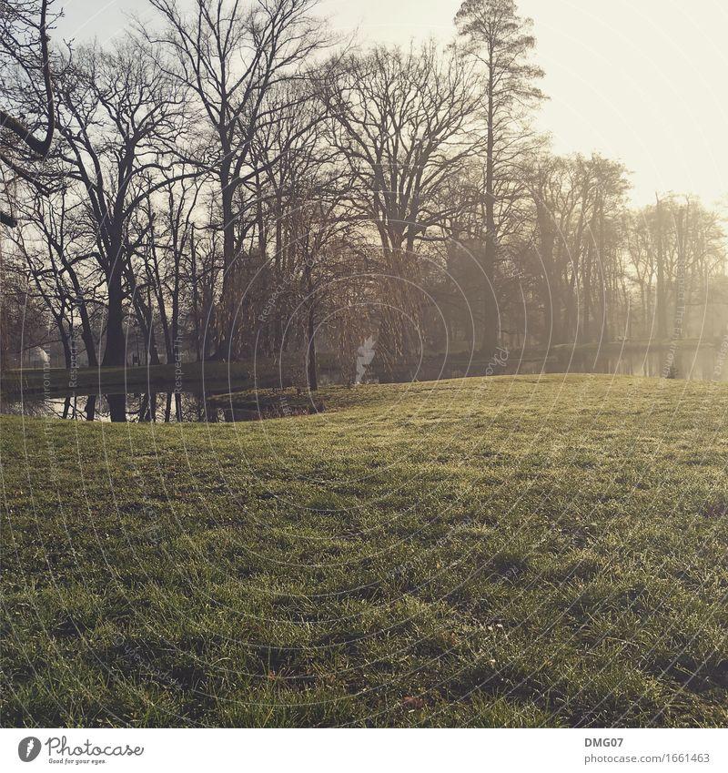 Park Lifestyle Umwelt Natur Landschaft Wasser Himmel Sonne Frühling Sommer Herbst Klima Klimawandel Wetter Schönes Wetter Baum Garten Wiese Flussufer See