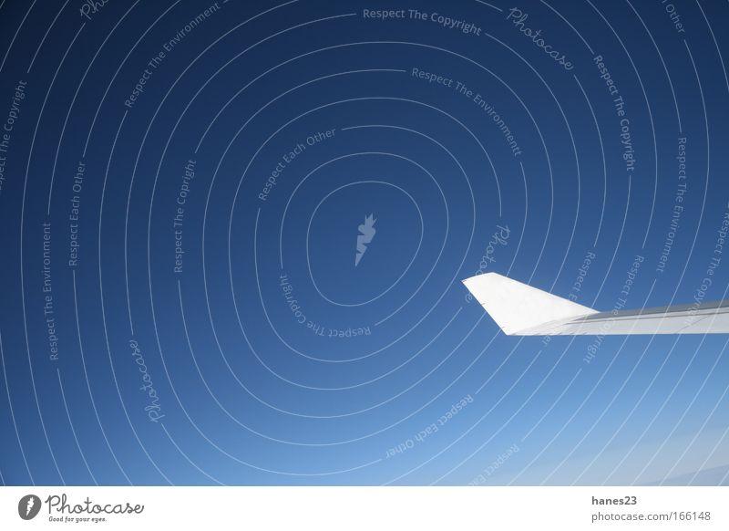 Über den Wolken Himmel blau fliegen Luftverkehr Flugzeug Tragfläche Wolkenloser Himmel Fensterblick Verkehrsmittel Verlauf himmelblau Passagierflugzeug Fensterplatz im Flugzeug