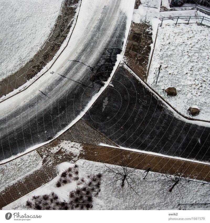 Abkühlung am Wochenende Landschaft Pflanze Winter Eis Frost Schnee Baum Gras Sträucher Wiese Verkehrswege Straße Kurve Bürgersteig Stein Beton frisch kalt
