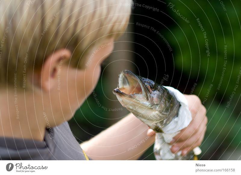 stolz Mensch Kind Tier Junge Lebensmittel Essen Kindheit blond Freizeit & Hobby Fisch Tiergesicht fangen Angeln Glätte Ekel