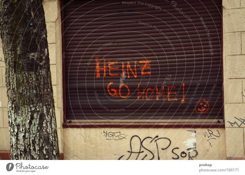 Der Heinz. Farbfoto Außenaufnahme Menschenleer Textfreiraum oben Tag Starke Tiefenschärfe Totale Baum Stadt Haus Mauer Wand Fenster Zeichen Schriftzeichen
