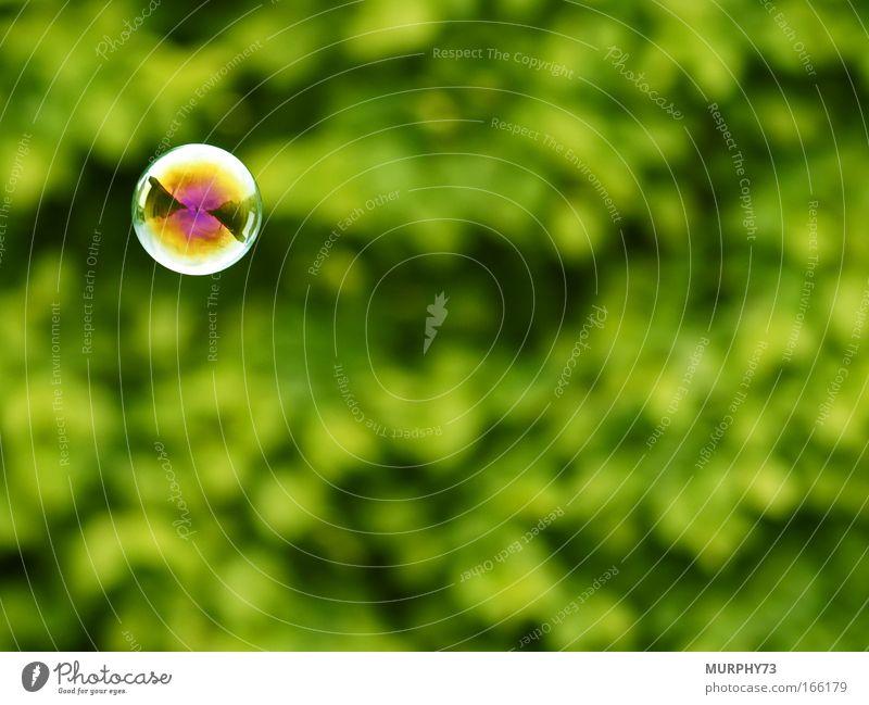 Magisches fliegendes Auge??? Wasser grün Freude Farbe Spielen Garten Luft glänzend frei rund Spielzeug außergewöhnlich Kugel mehrfarbig Seifenblase Unschärfe
