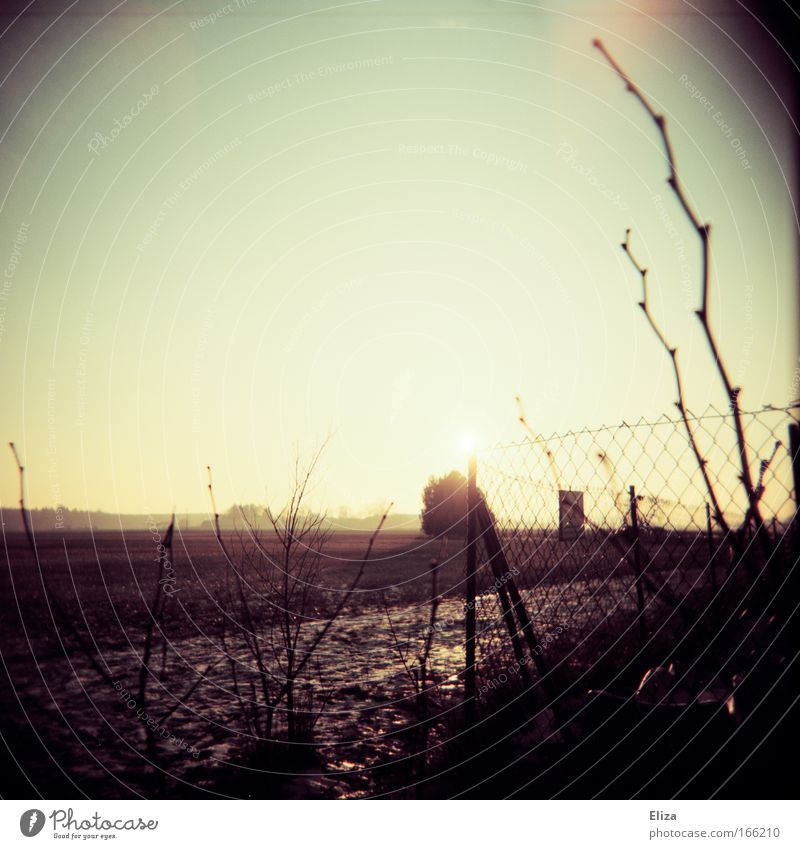 Zaunstück Winter Einsamkeit Ferne Feld Nebel Horizont Sträucher Unendlichkeit Vignettierung Lomografie Sonnenuntergang