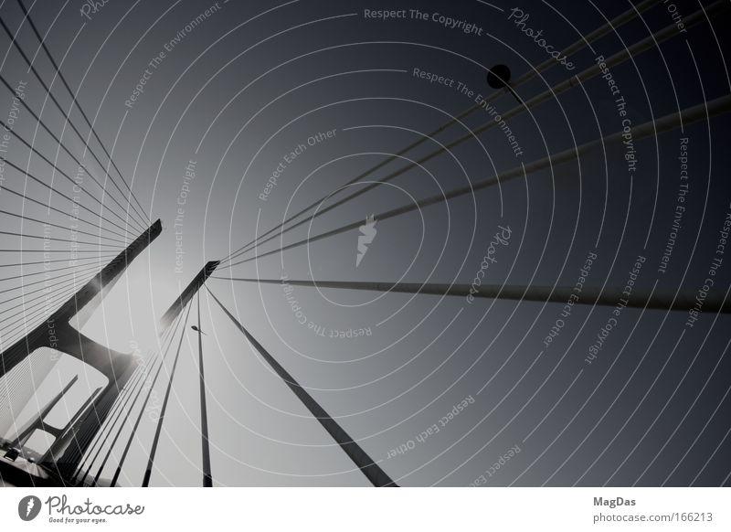roadtrip Ferien & Urlaub & Reisen Ferne Straße Wege & Pfade Bewegung Freiheit frei Kraft ästhetisch genießen Geschwindigkeit groß Brücke Wandel & Veränderung