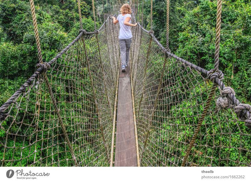 Mädchen auf Hängebrücke Mensch Natur Ferien & Urlaub & Reisen Jugendliche Pflanze grün Junge Frau weiß Baum Blatt Ferne Wald Umwelt Wege & Pfade natürlich