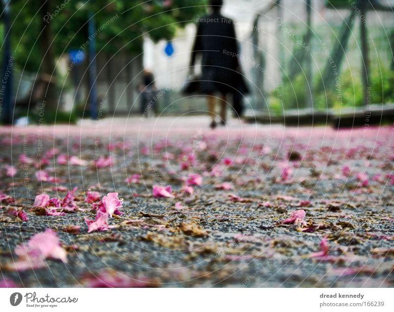 I'm Good, I'm Gone. Mensch Frau blau Stadt grün Baum Sommer Blume Einsamkeit Erwachsene Wege & Pfade Bewegung Blüte Park Erde Arbeit & Erwerbstätigkeit