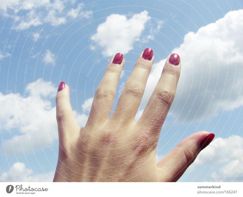 Nach den Wolken greifen Himmel Natur blau weiß Sommer Sonne rot Hand feminin Freiheit träumen weich Finger Schönes Wetter berühren