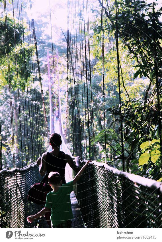 und es kommt doch auf die länge an! Mensch Frau Natur Ferien & Urlaub & Reisen Pflanze Baum Hand Blatt Ferne Wald Erwachsene Junge Familie & Verwandtschaft