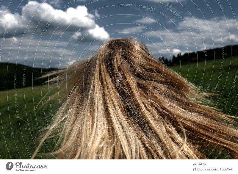 der sommer naht! Lifestyle elegant schön Haare & Frisuren Zufriedenheit Erholung Sommer Sonne Mensch feminin Kopf 1 Landschaft Himmel Wolken blond drehen blau