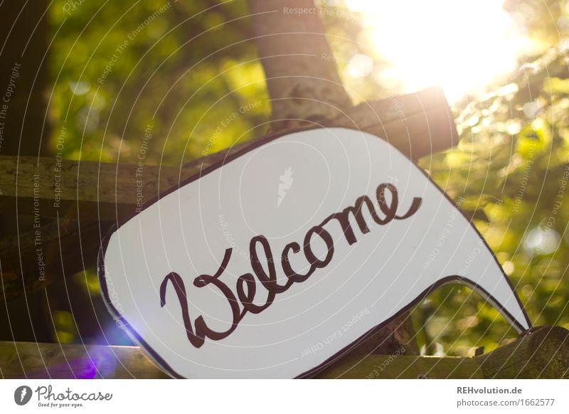 Welcome Natur grün Baum Wald Umwelt Wärme Zusammensein Freundschaft frei Schilder & Markierungen Schriftzeichen Lebensfreude Hinweisschild Zeichen
