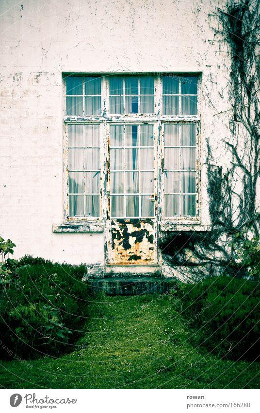 zum garten alt weiß Haus dunkel Fenster Gras Garten Traurigkeit Park Gebäude dreckig Architektur Tür Fassade trist Vergänglichkeit