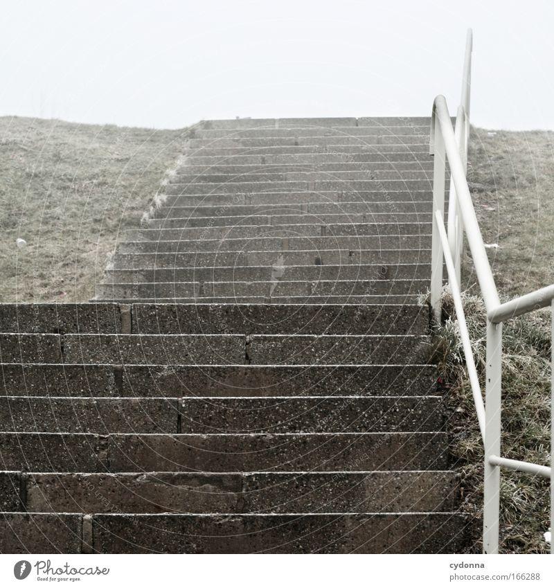 Ohne Ziel Winter Leben Wiese Gefühle Gras träumen Traurigkeit Wege & Pfade Eis Nebel Wetter Zeit Beginn Hoffnung Treppe Zukunft