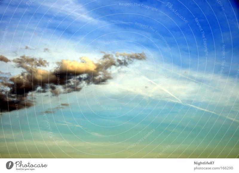 Regenbringer Farbfoto Außenaufnahme Textfreiraum rechts Tag Sonnenlicht Ferien & Urlaub & Reisen Freiheit Sommer Umwelt Natur Himmel Wolken Gewitterwolken Klima