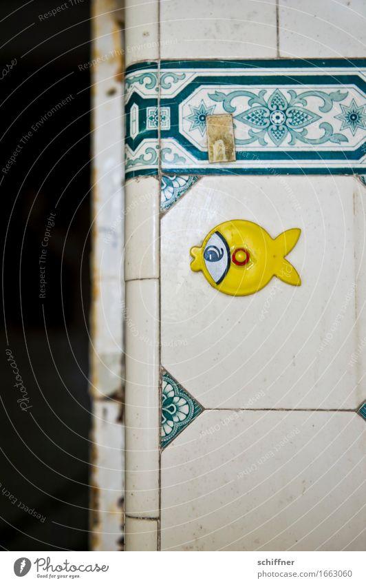 AST 9 | Gestrandet Tier Fisch 1 alt kaputt gelb Etikett Abrissgebäude Fliesen u. Kacheln altmodisch Muster Strukturen & Formen Verfall verfallen Innenaufnahme